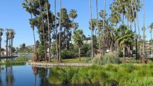 Park in LA