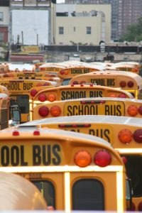 School buses for Special Needs and Learning Disabilities Schools
