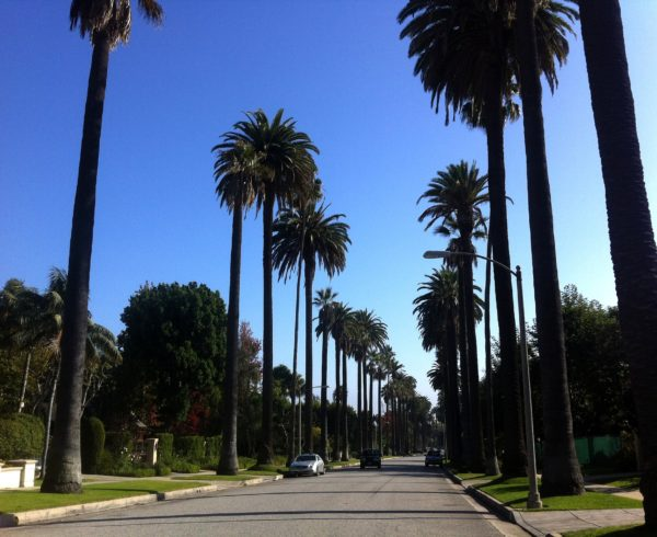 street in Beverly Hills