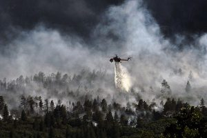 A helicopter trying to put down a forest fire.